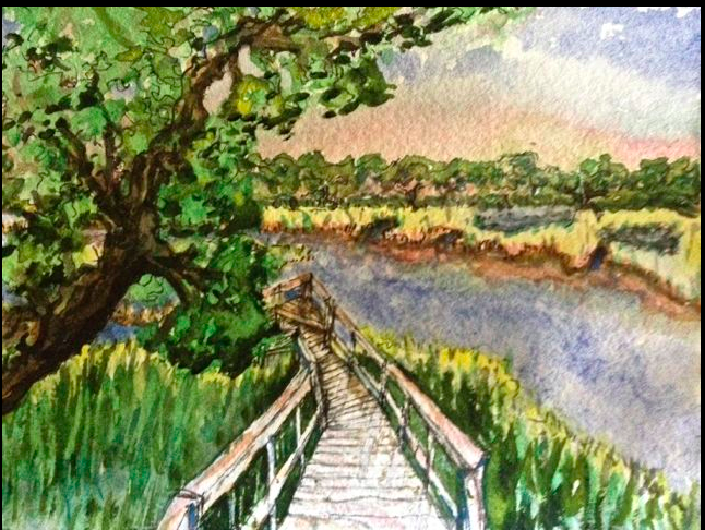 Zena's Marsh